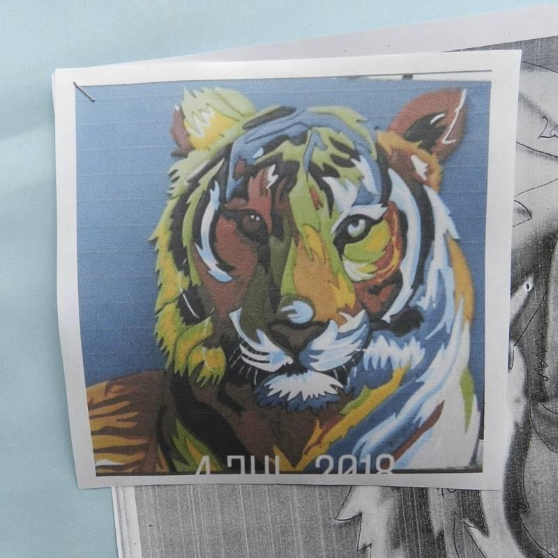 Set Encastre Tigre Chico 40...